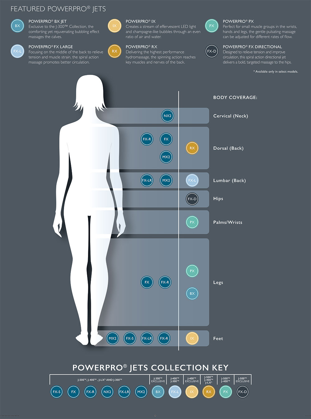 Hydromassage Infographic